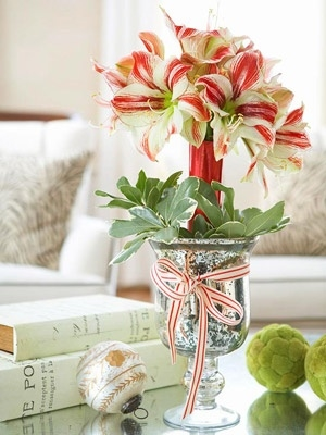 Amaryllis in Mercury Glass Vase (photo: BH&G)