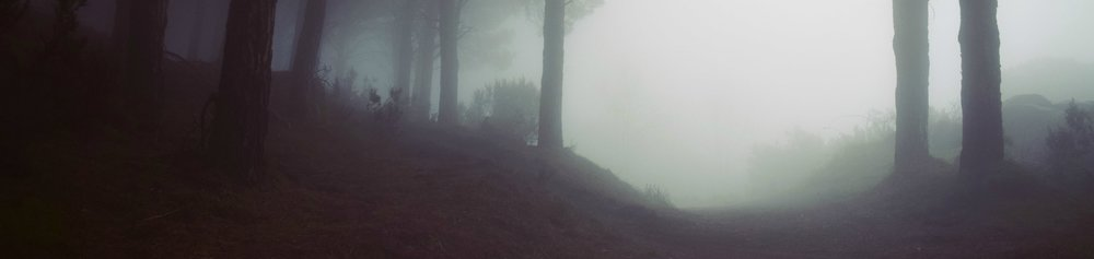 foggy long-min.jpg
