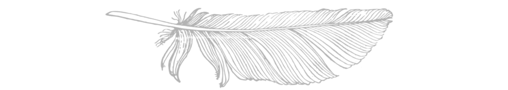 feather+long-min.png