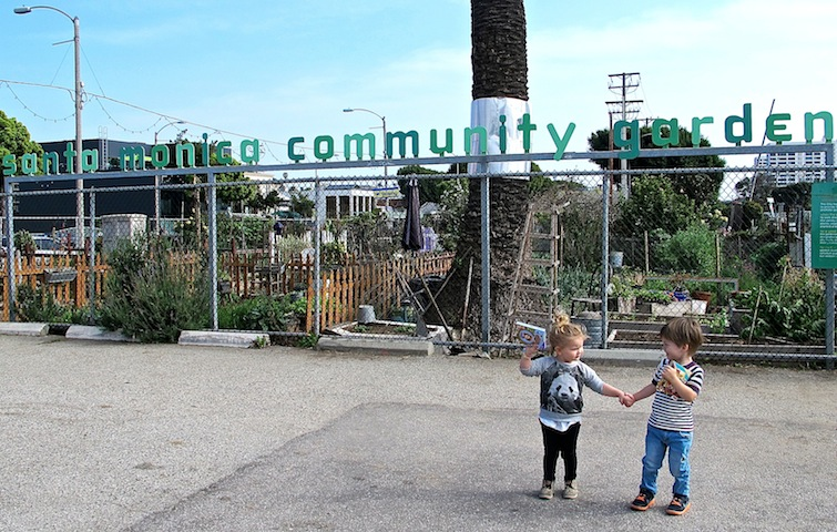 Max and Mini atthe Santa Monica community garden