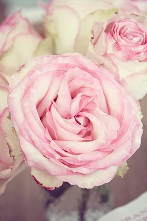 Luscious floral arrangements decorate Miranda's beachside home