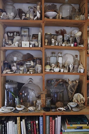 sibella's shelves are beautifully styled and curated