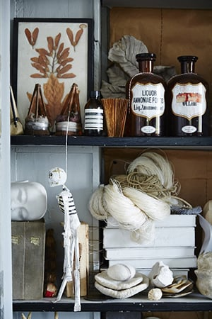 apothecary jars and other curiosities line the shelves