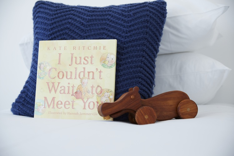 Kate's book and a wooden hippo they bought for Mae