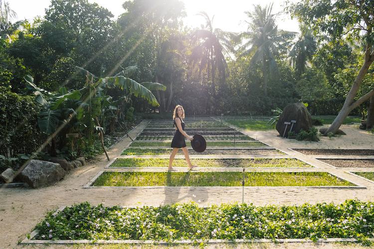 Taking a stroll through the organic garden at Six Senses