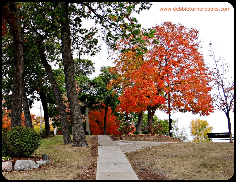 Commons Park.jpg