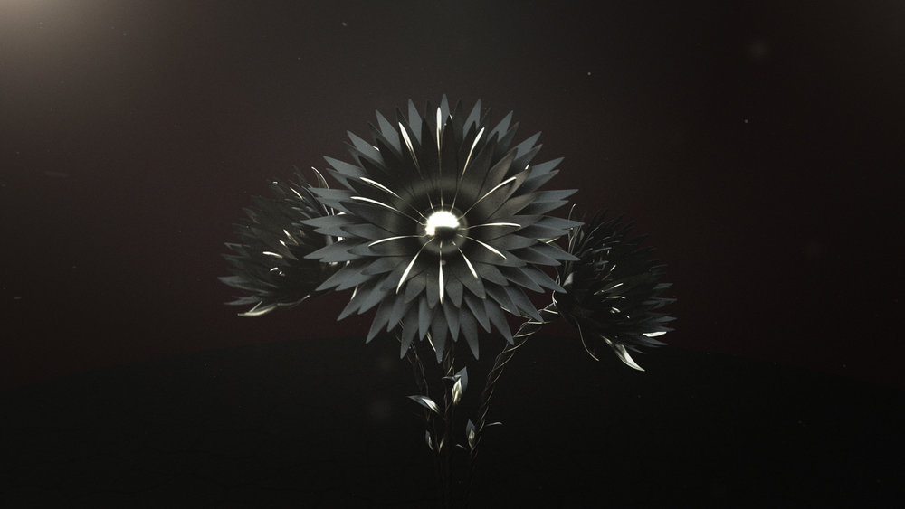 -Lonely-Flowers-(00312).jpg