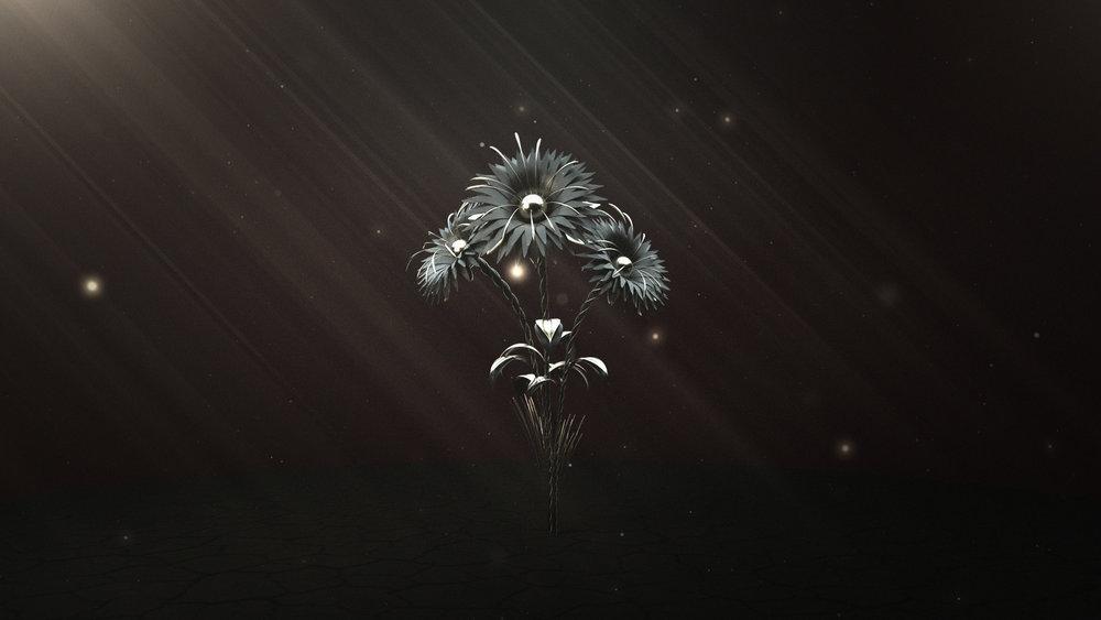 -Lonely-Flowers-(00464).jpg