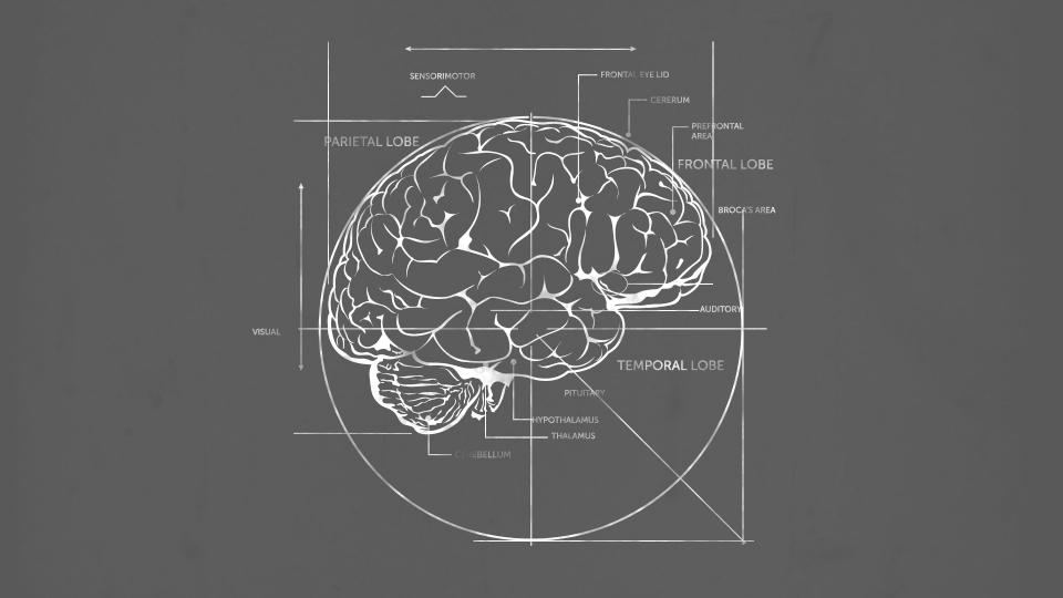 Lumosity: Consider the Brain
