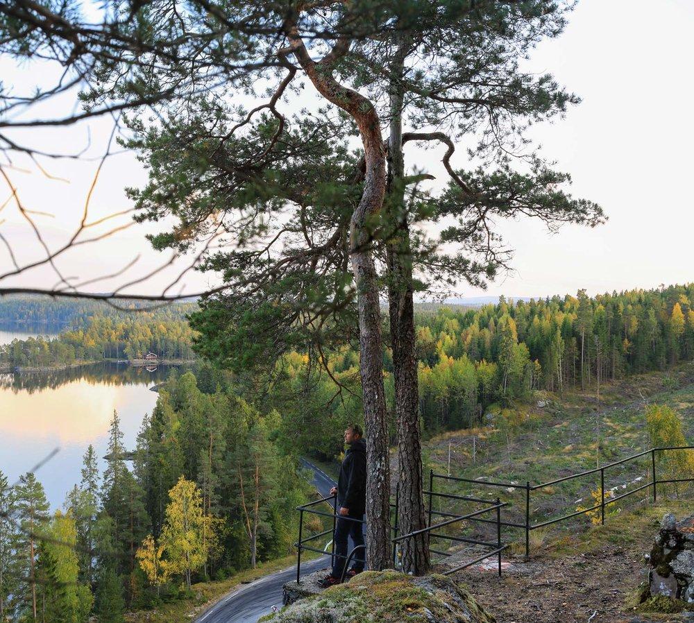 Flagghytta-web-denne-utsikt-Untitled_Panorama2.jpg