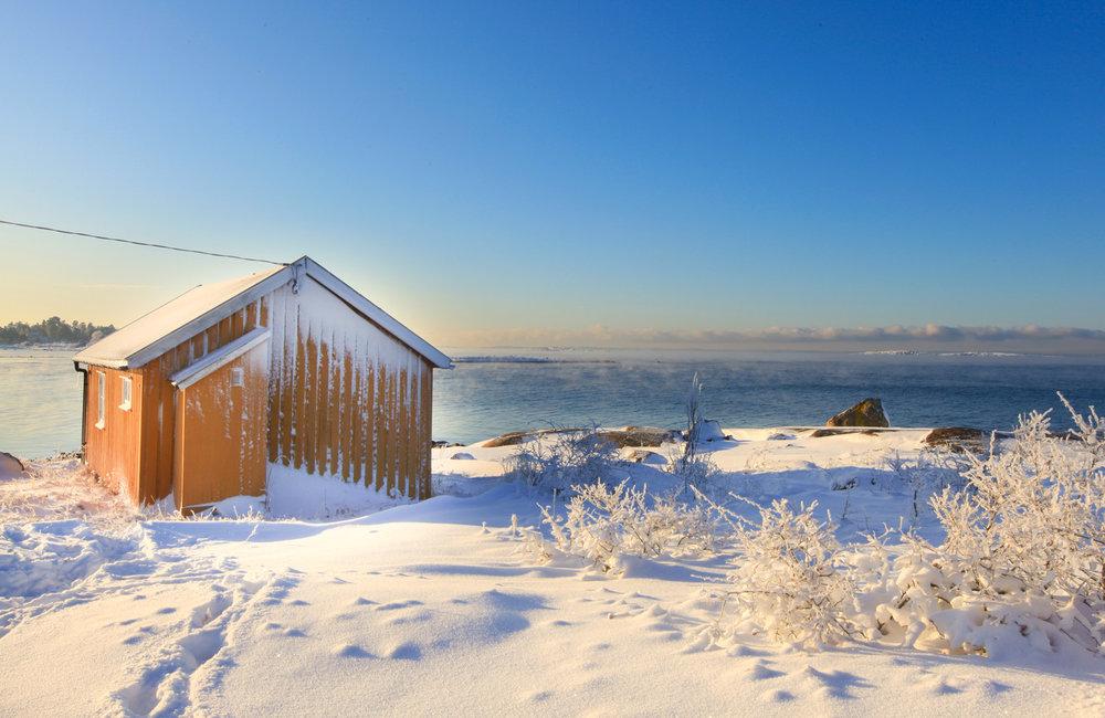 Vinter-2010-075.jpg
