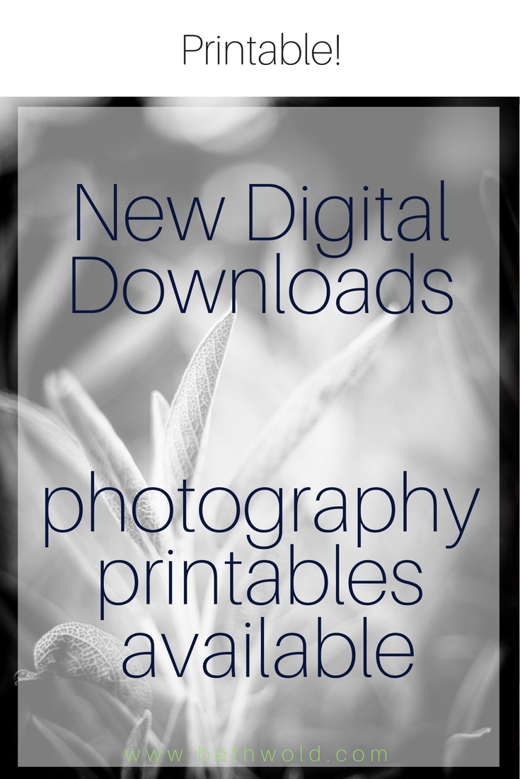 Three digital downloads. Printable art for your home or for gifting.