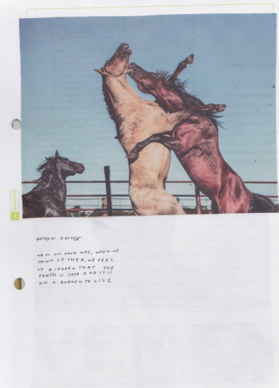 Scan 182.jpeg