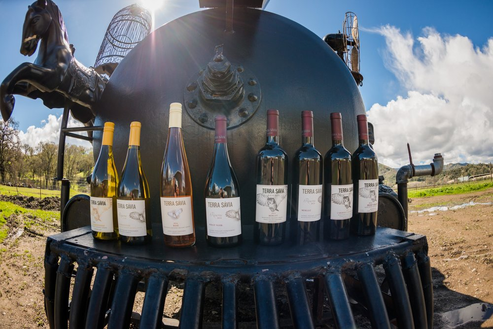 ts-wines-on-train.jpg