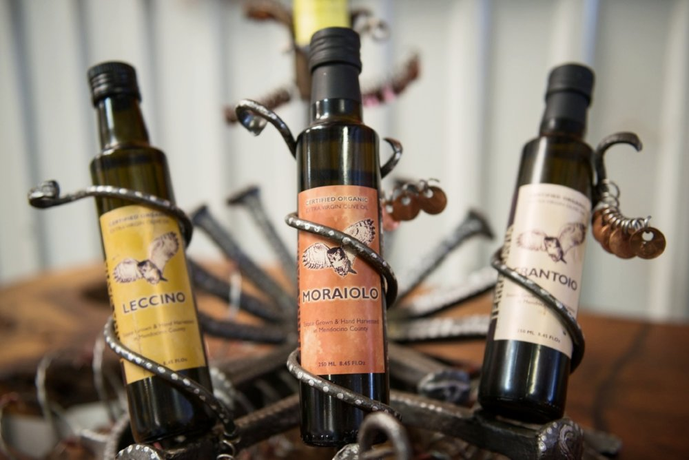 ts-olive-oil-moraiolo.jpg