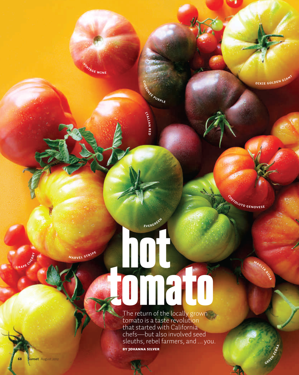 fcc0812t_Tomatoes-1-1.jpg