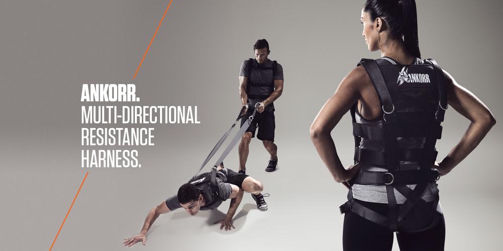 ankorr-harness-2.jpg