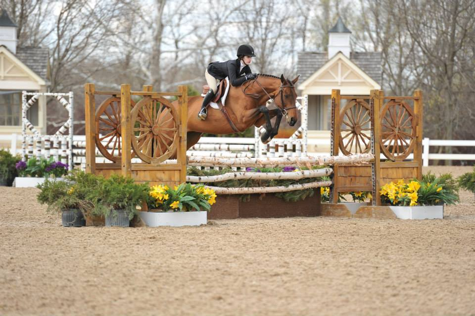 Clockwork owned and shown by Ashley Meek winning the NAL Children's Hunter Classic at Showplace Spring Warm Up II, May 2014