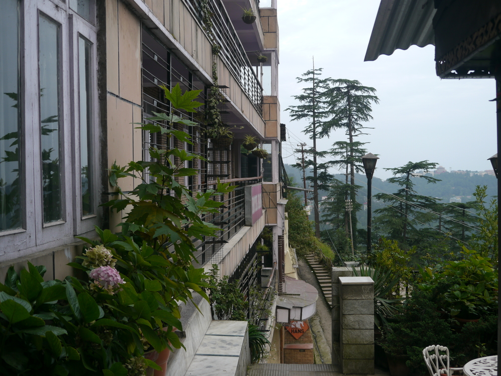 The view from my Hotel in Shimla. Shimla is an old British Hill Station which is now popular with Indian Honeymooners. The only place  I have come across in India which rubbish free.