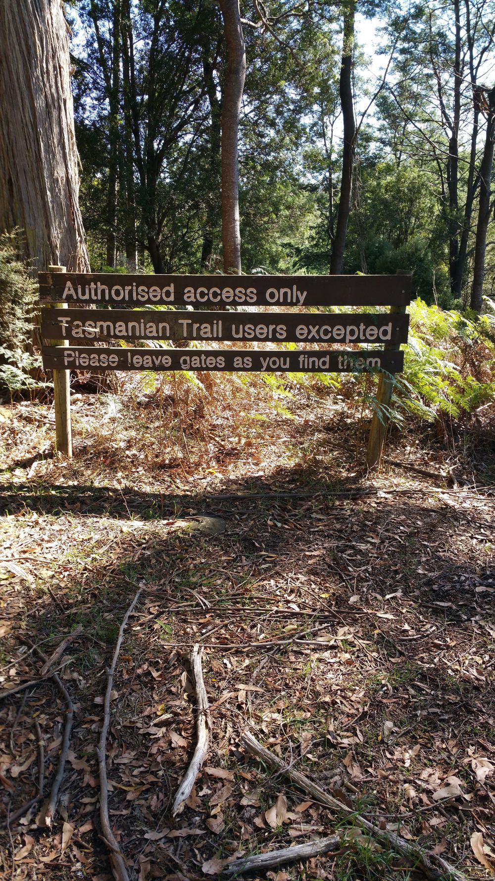 Access to some nice trails