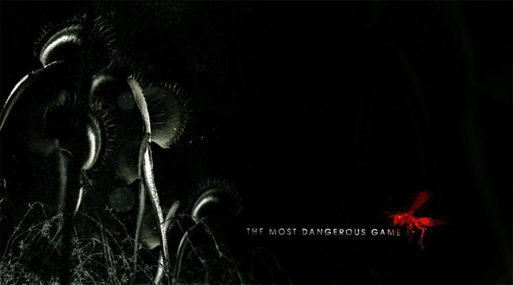 sarahorenstein_dangerousgame01