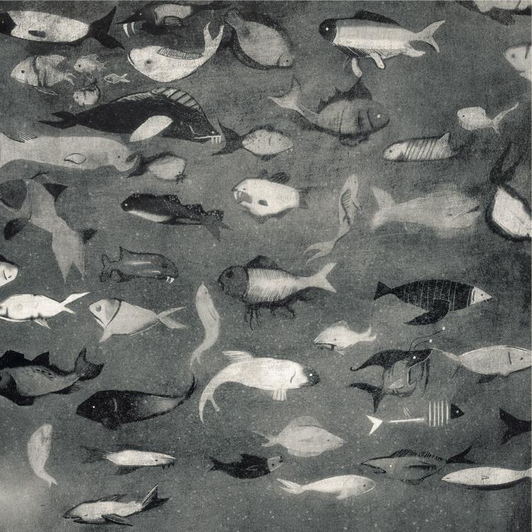 sarahorenstein_wildfish01