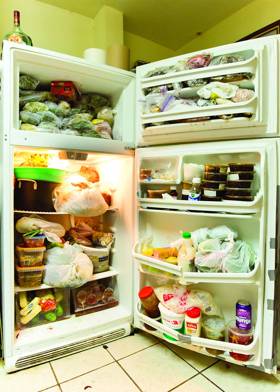 2014_Fridge1-XL.jpg
