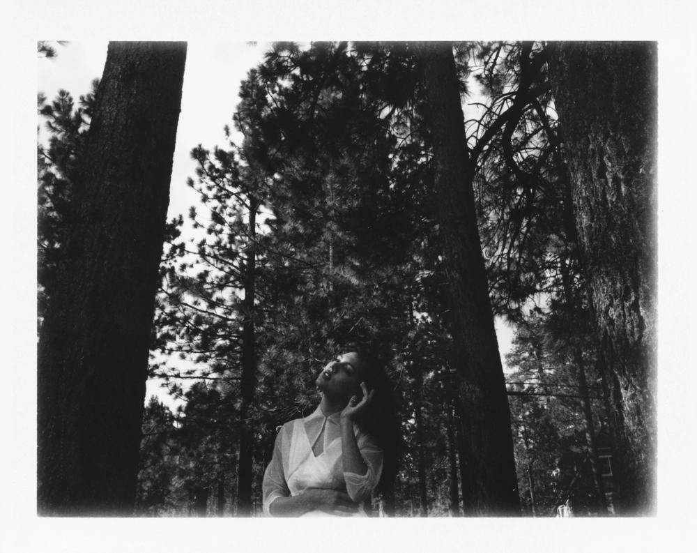 GreenValley_Polaroid_001.jpg