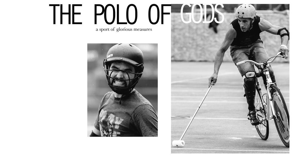polo-.jpg