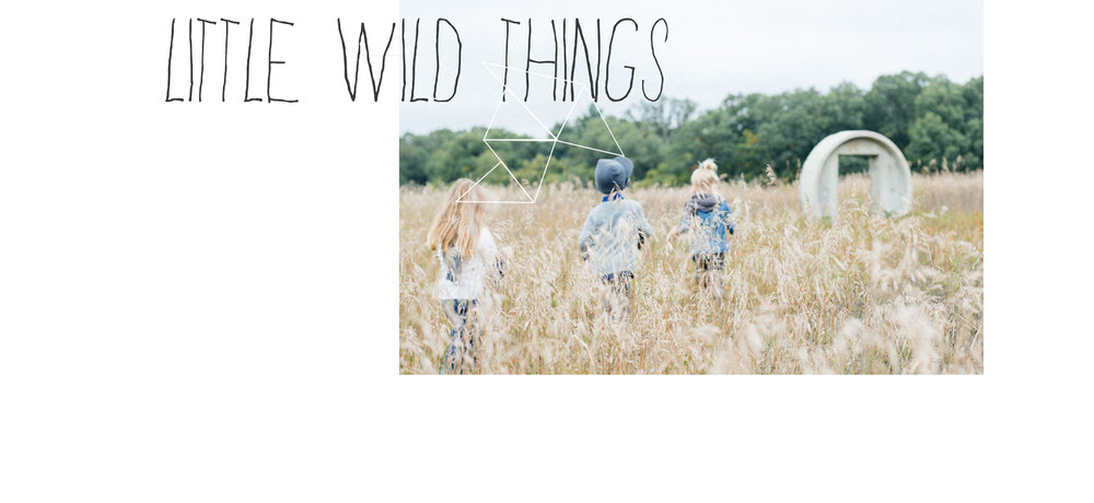 little_wild_things_01.jpg
