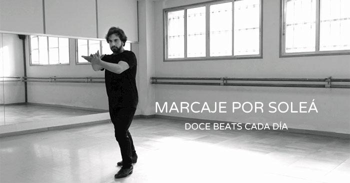 Solea-Marcaje-Tutorial.JPG