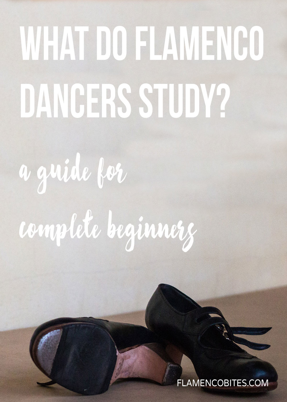 What do flamenco dancers study? | www.flamencobites.com