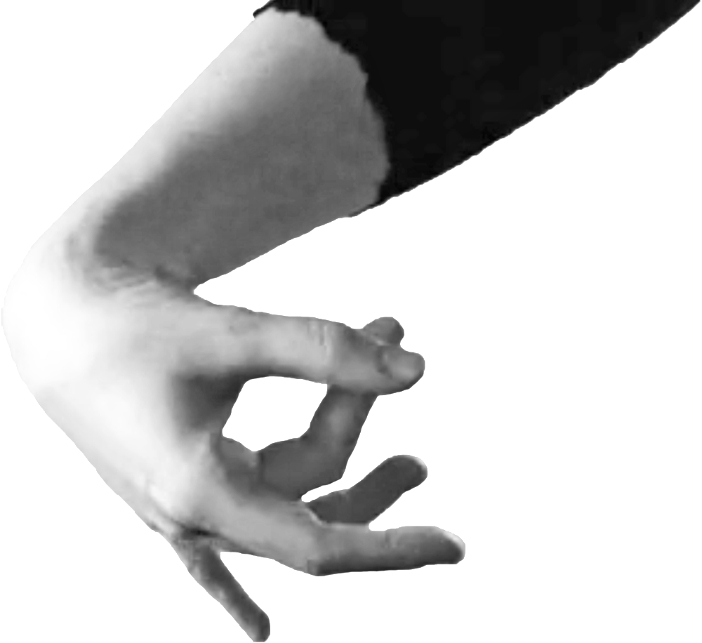 icon-hand-bw.png