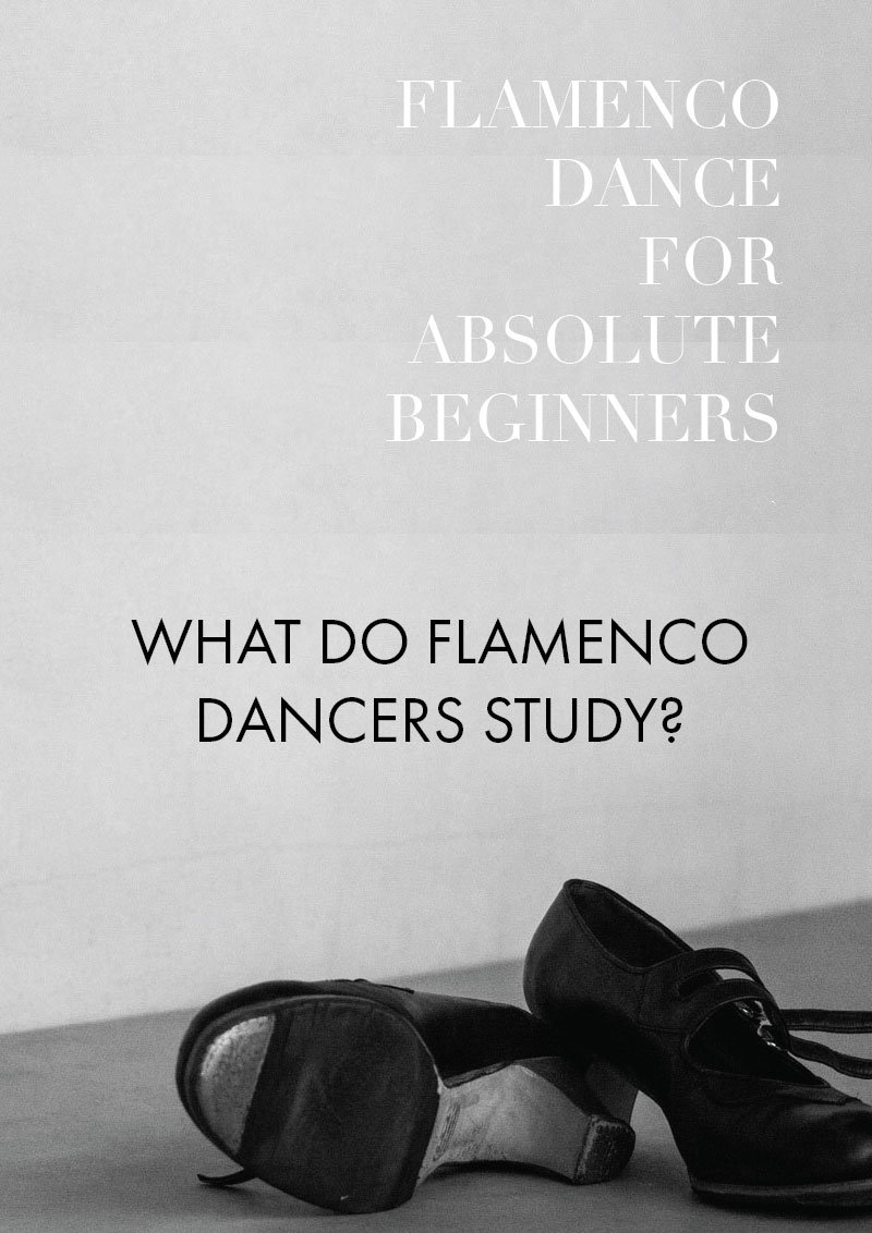 Part 2 - Guide to flamenco dance for absolute beginners | What do flamenco dancers study?
