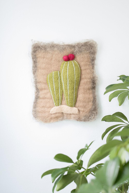 Cactus, 2017