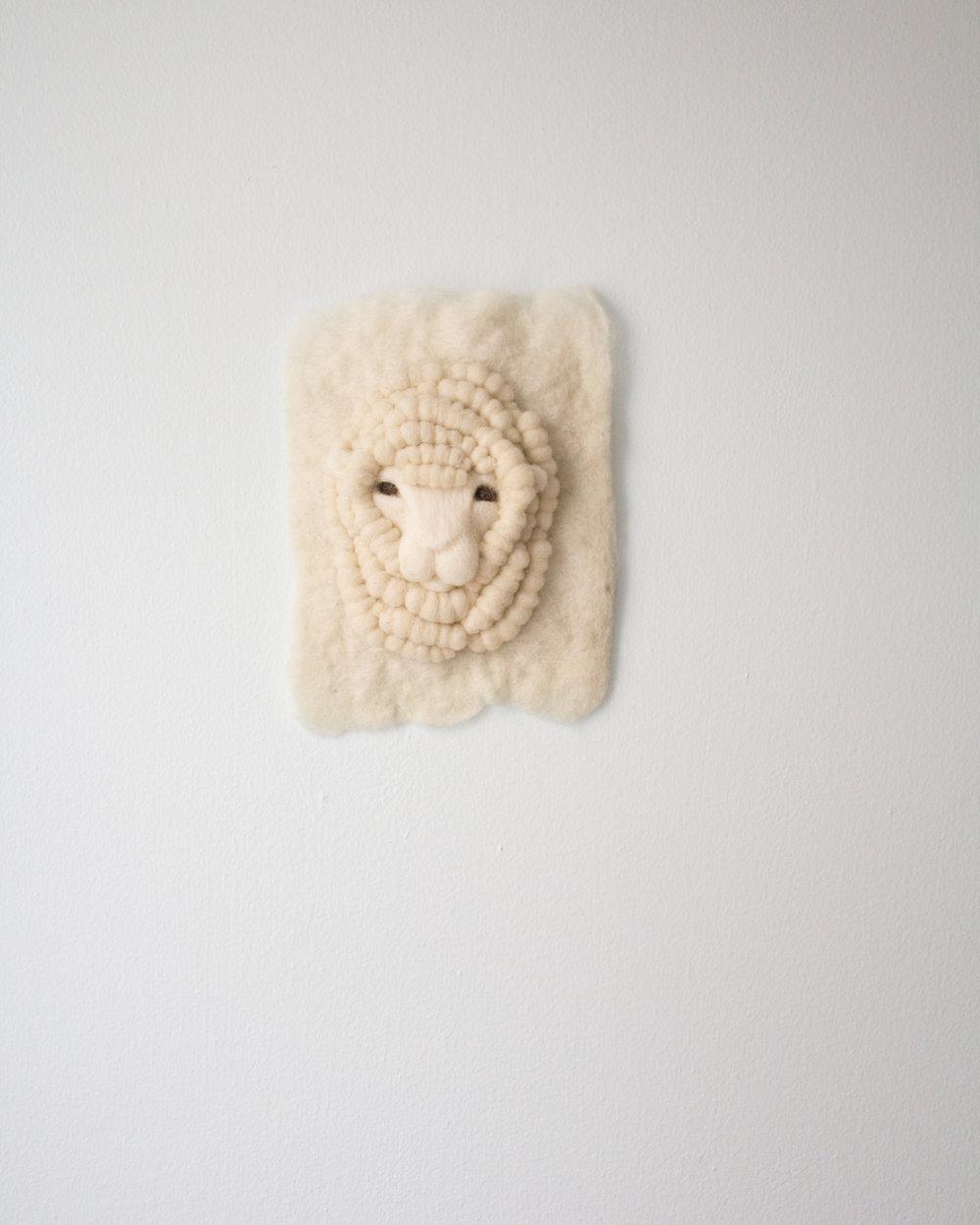 Small White Merino Sheep