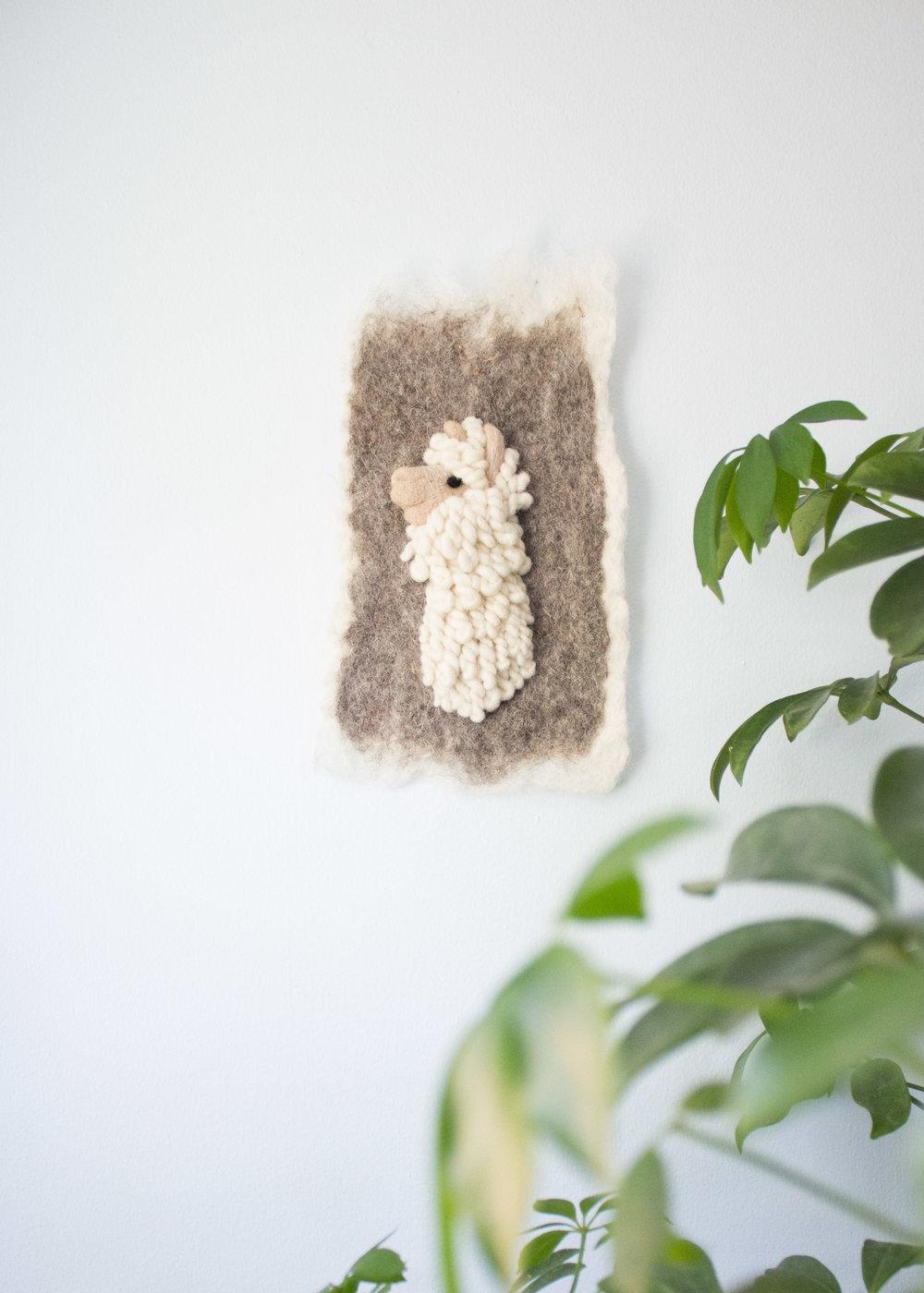 Small Suri Alpaca II