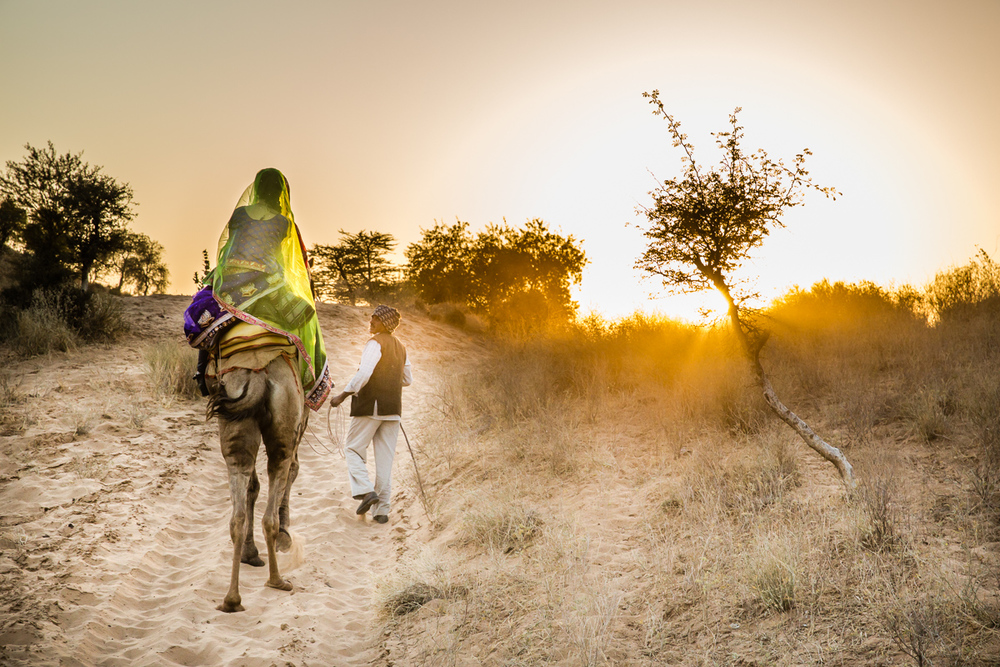 Rajasthan-9.jpg