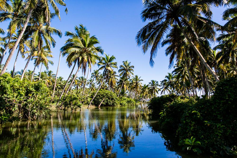 Kerala-2.jpg