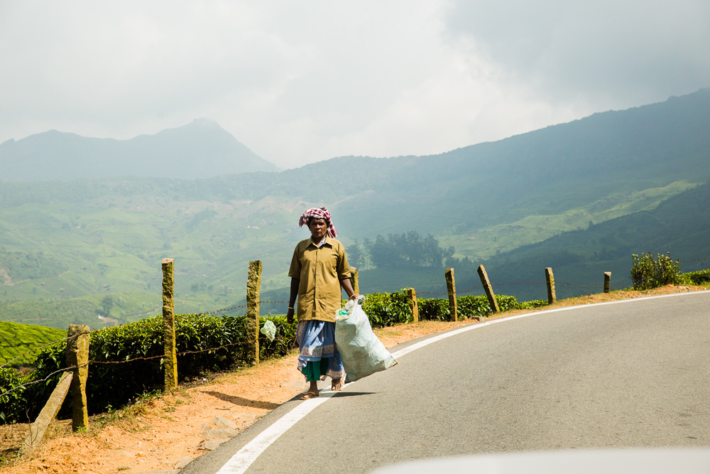 Kerala-30.jpg