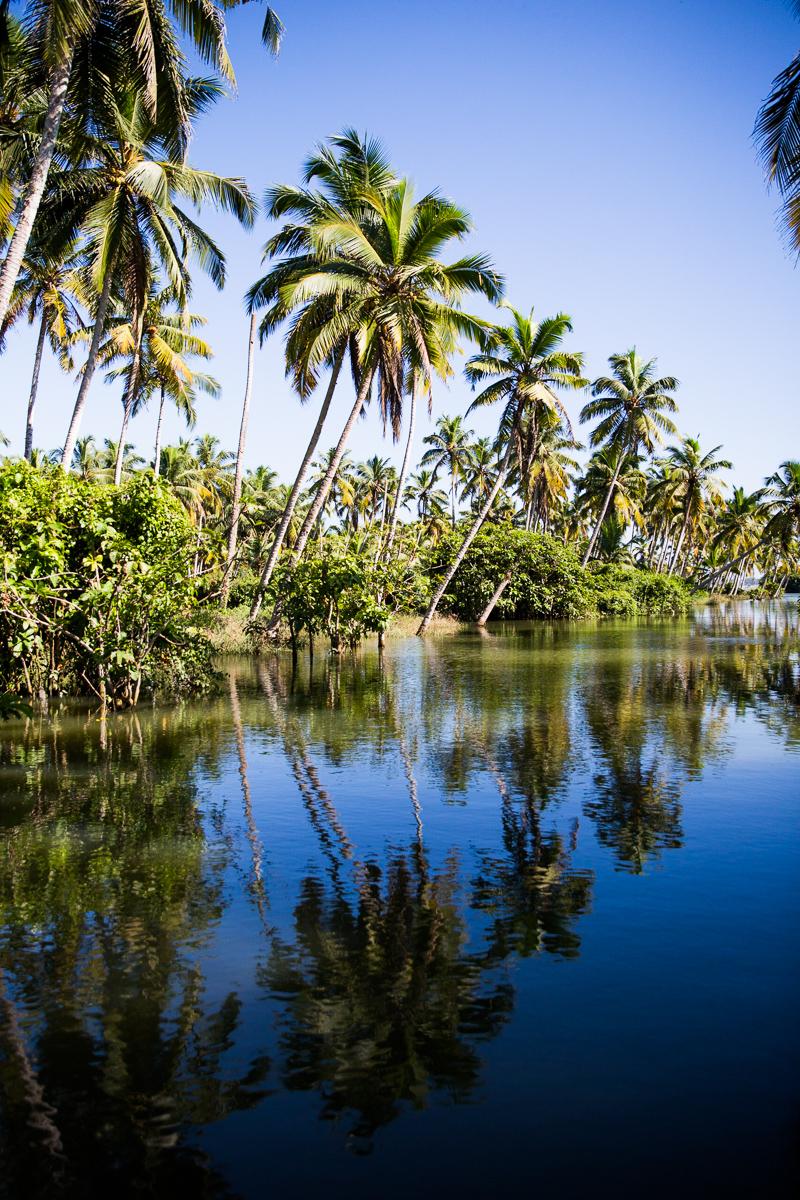 Kerala-38.jpg