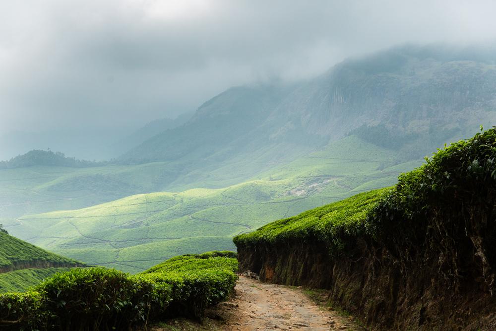 Kerala-40.jpg