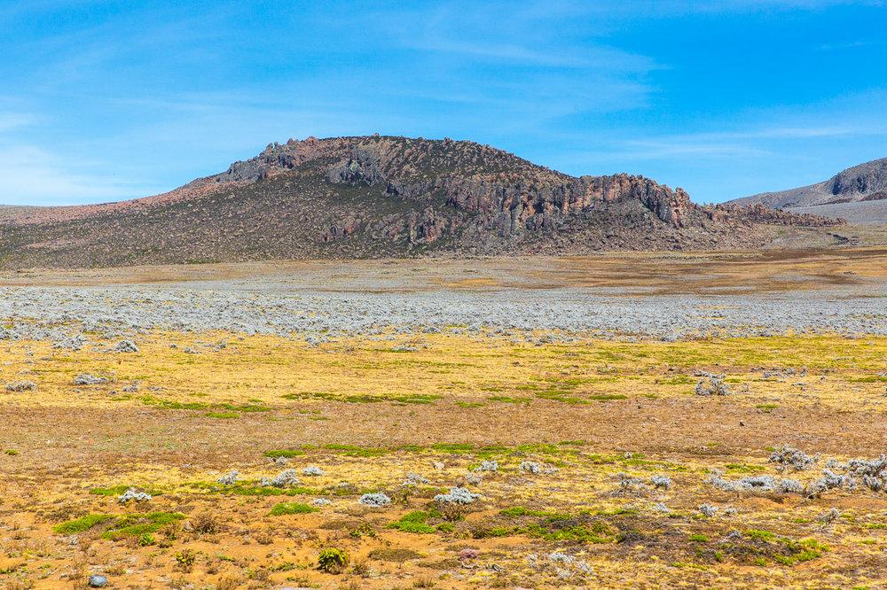 Ethiopia_Bale-9.jpg