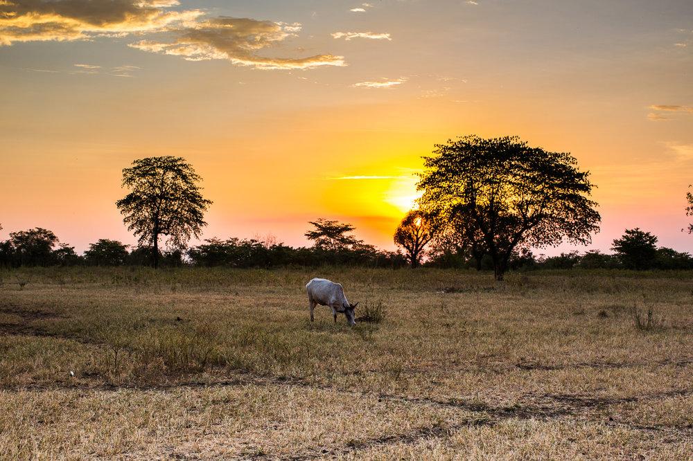 Ethiopia_Omo_Mursi-10.jpg