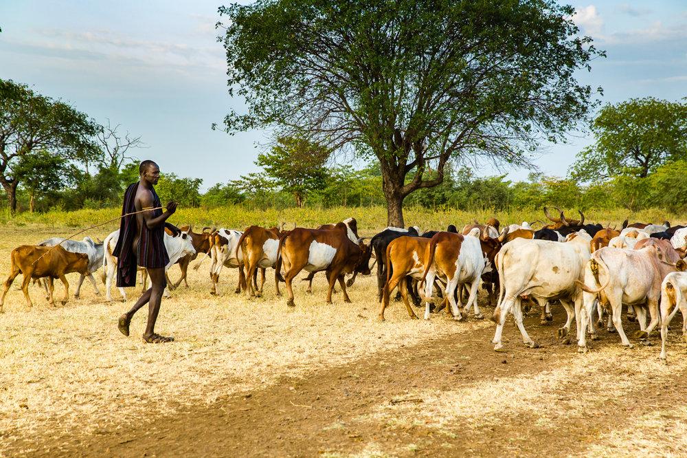 Ethiopia_Omo_Mursi-16.jpg