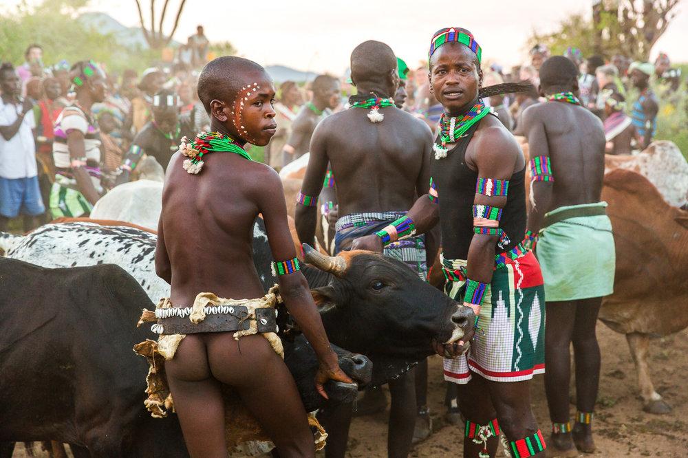 Ethiopia_Omo_Bull-8.jpg