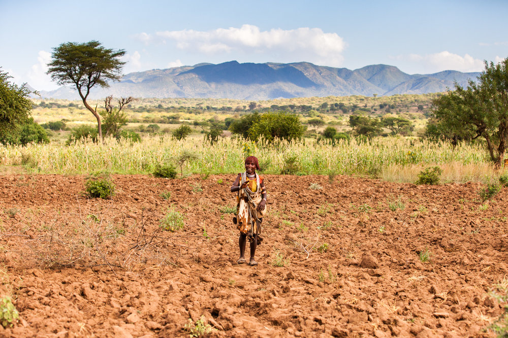 Ethiopia_Omo_Bull-33.jpg