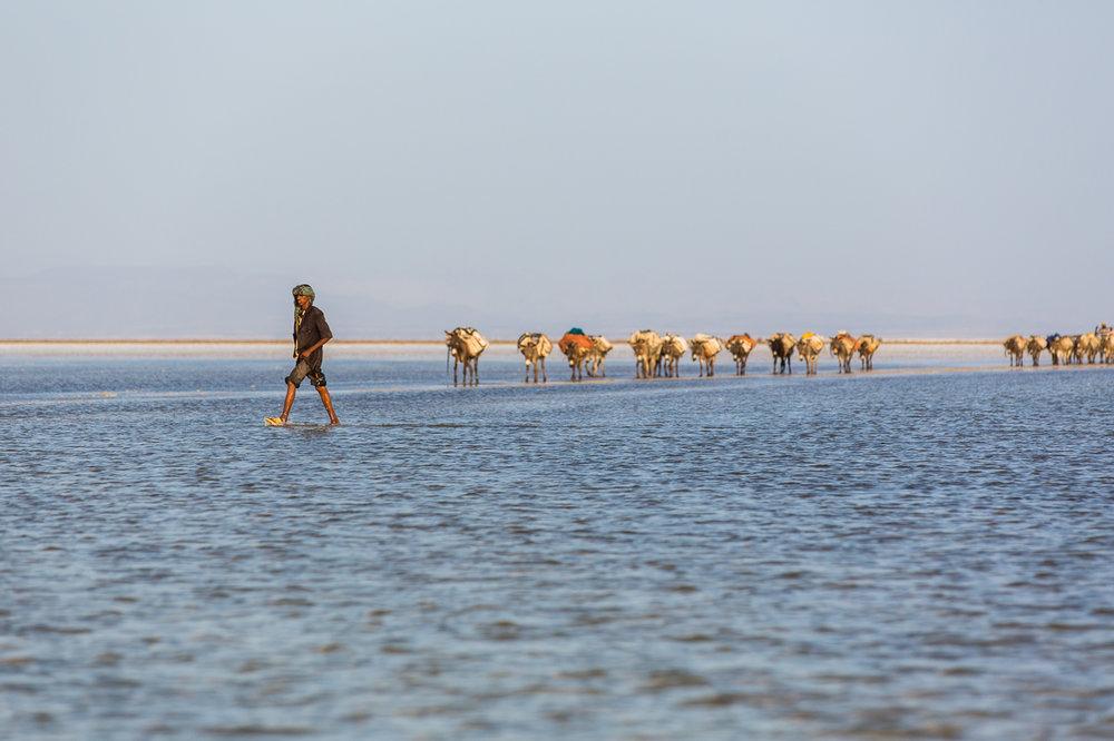 Ethiopia_Danakil-12.jpg