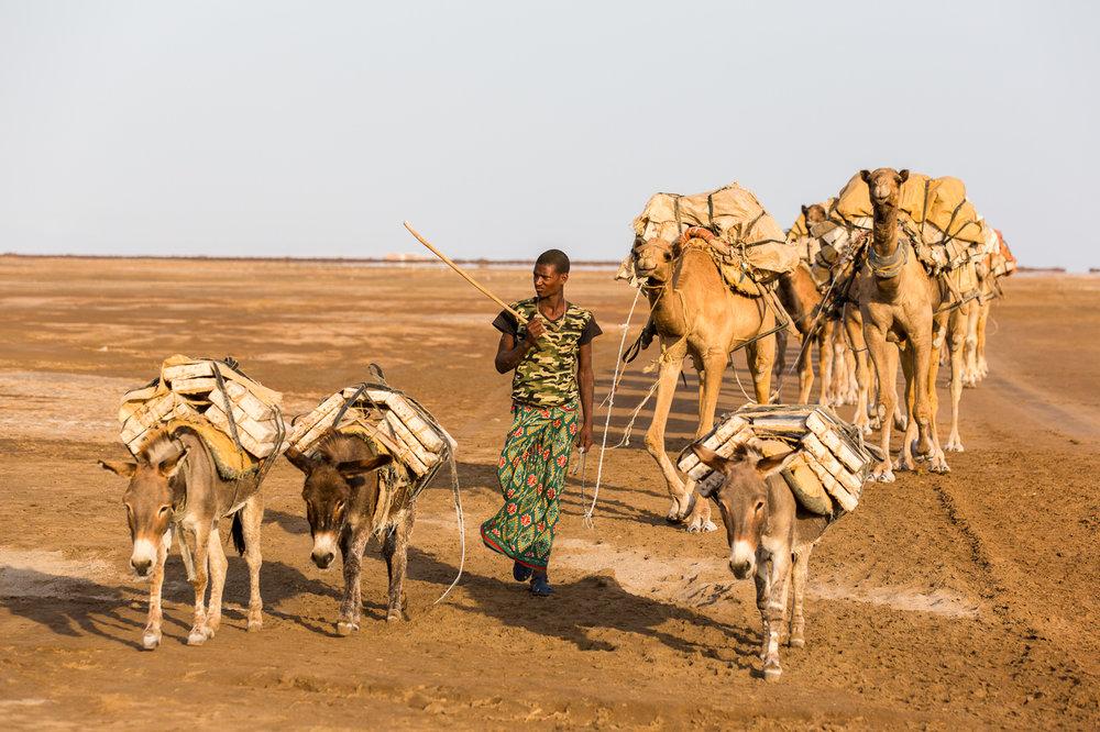 Ethiopia_Danakil-16.jpg
