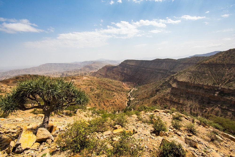 Ethiopia_Danakil-38.jpg